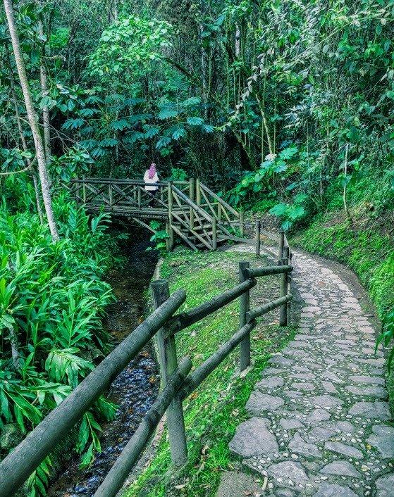 hiking in Parque Piedras Blancas