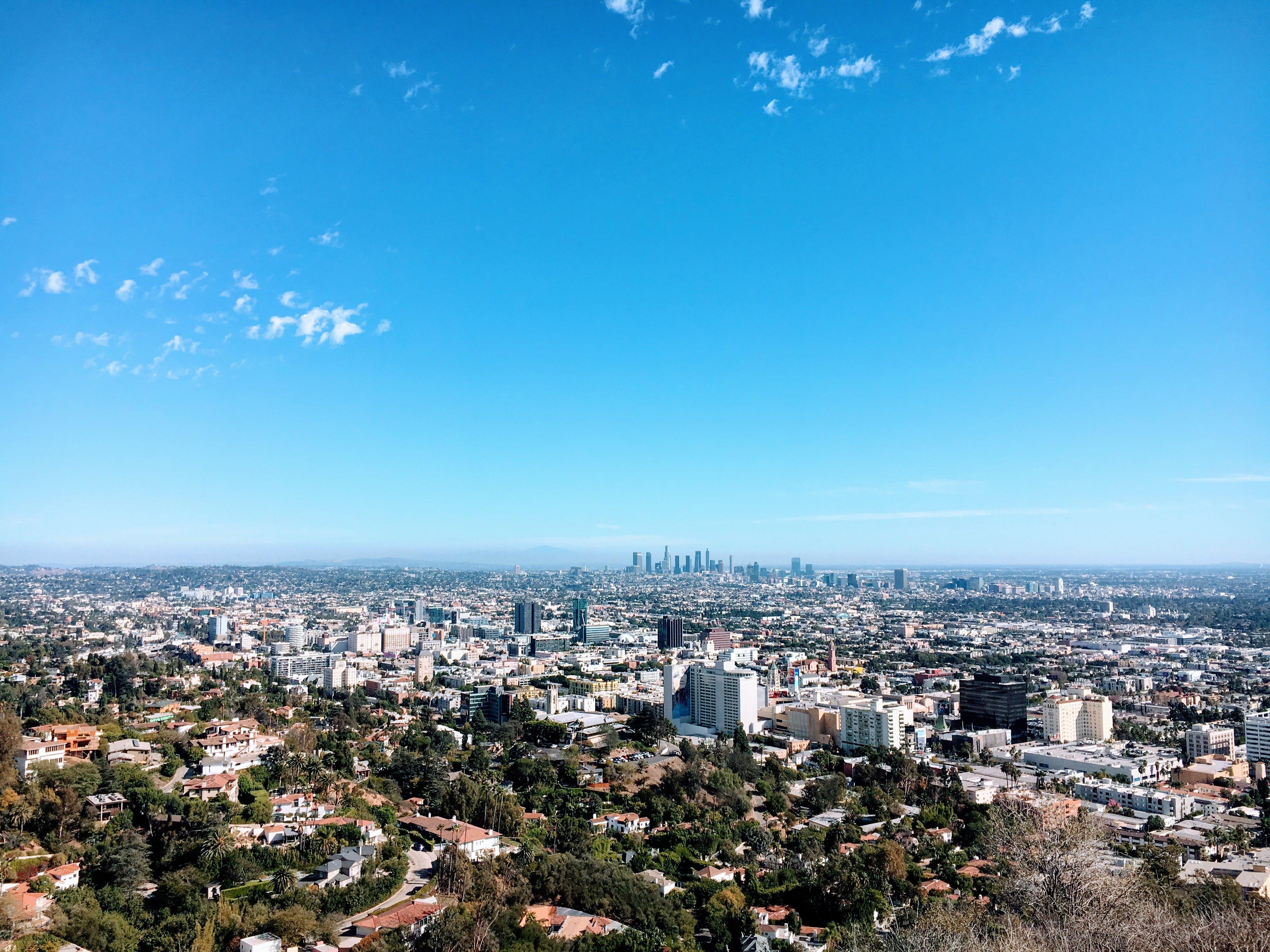 traveling in LA after starting a digitla marketing business