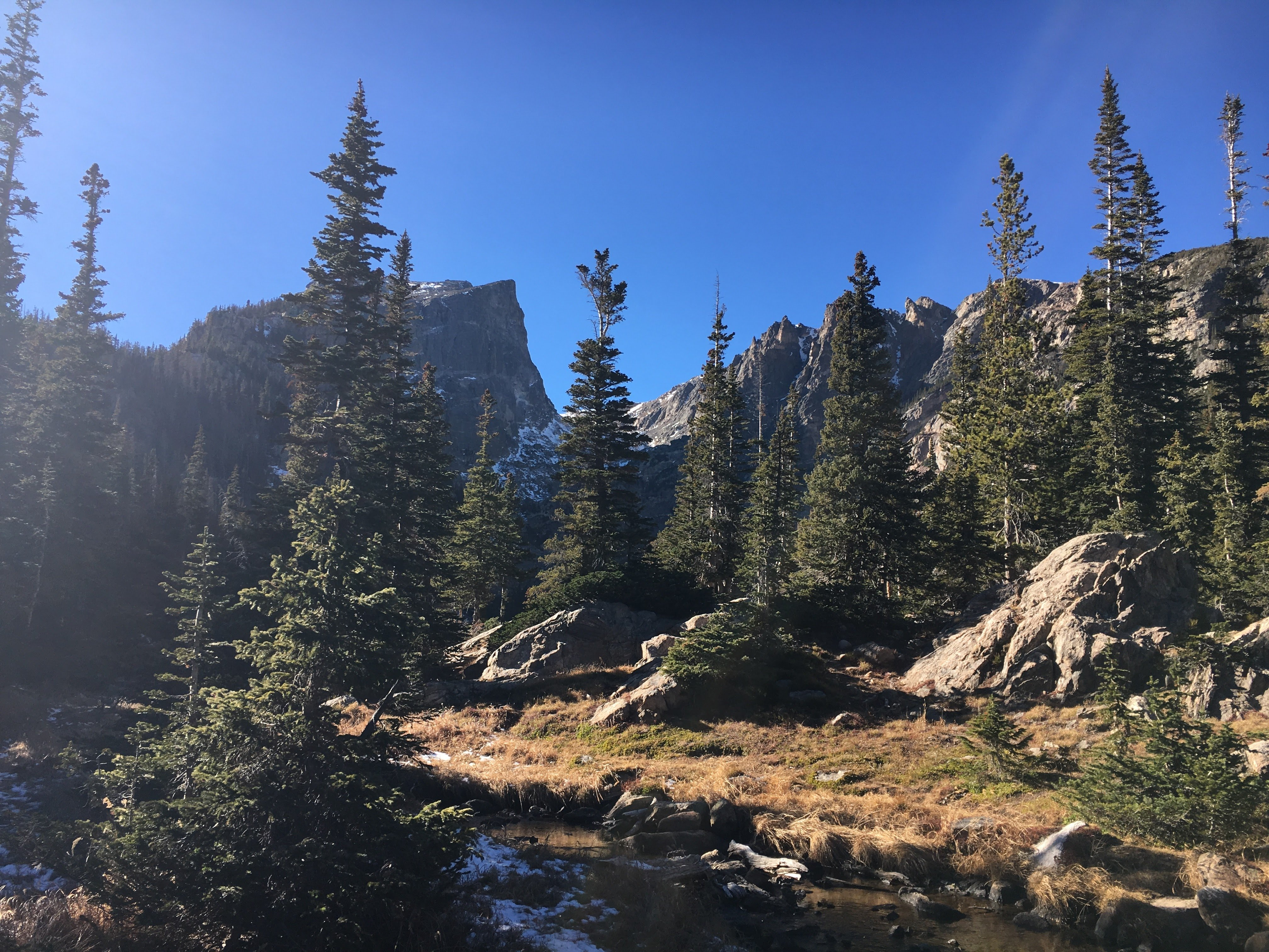Traveling in Rocky Mountain National Park after starting a digital marketing business