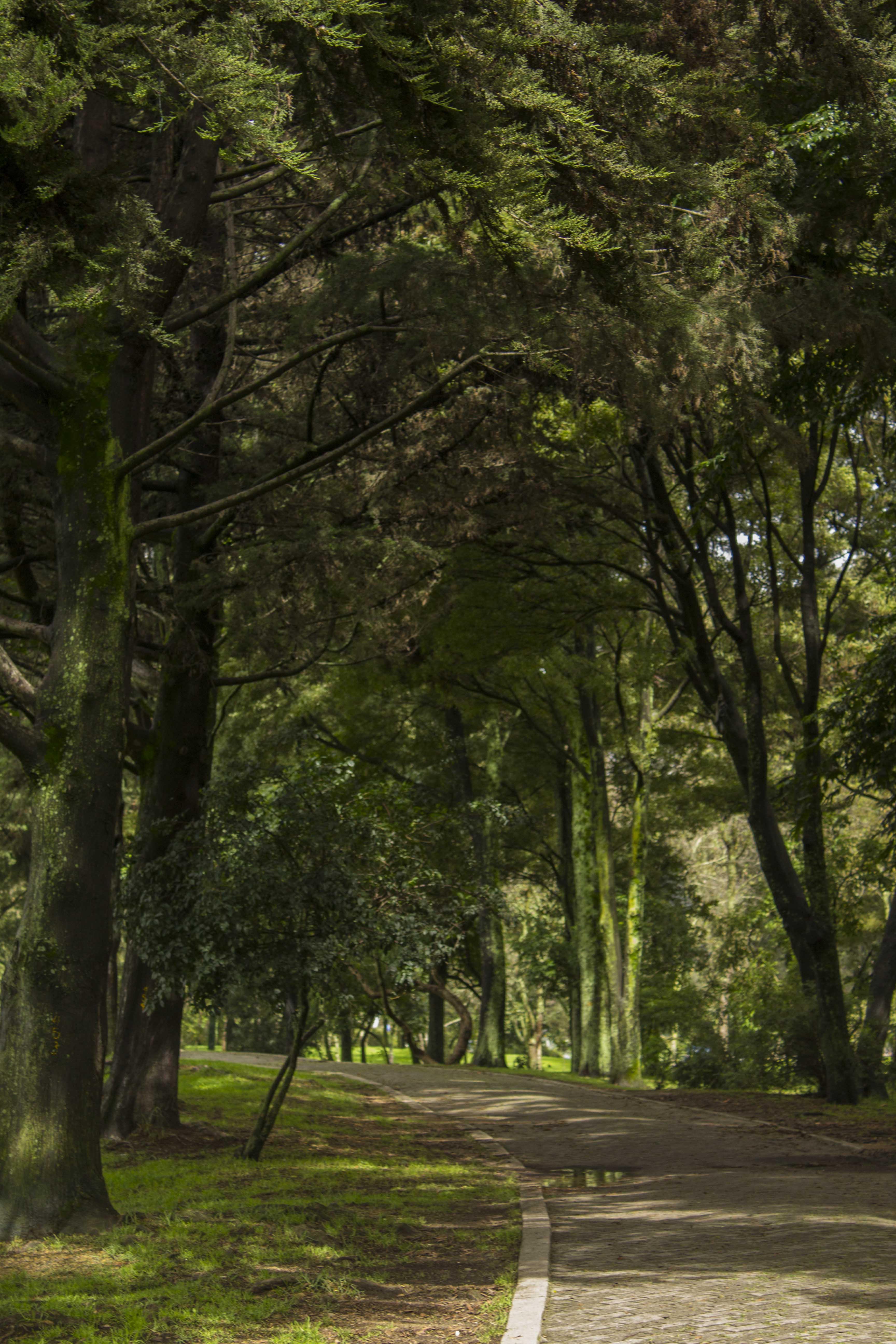 Simon Bolivar park in Bogota, Colombia