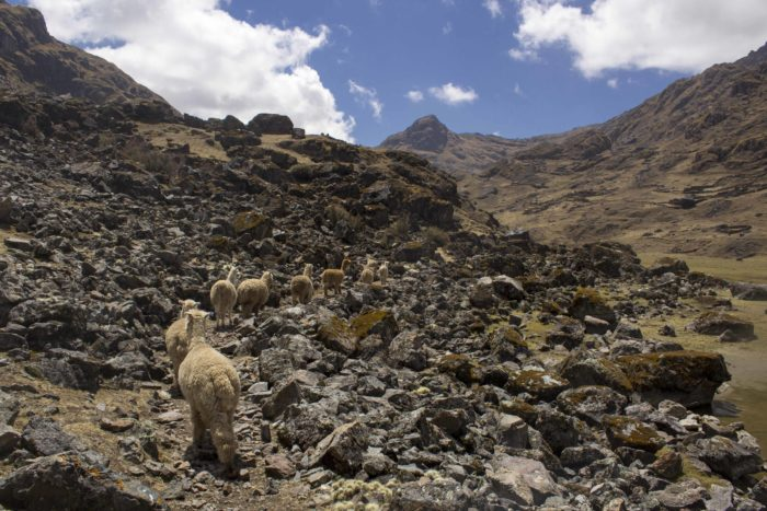 In Photos: The Kinsa Cocha Hike to Pisac's Three Lakes