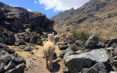 How to Hike to Kinsa Cocha and See Pisac's Three Lakes