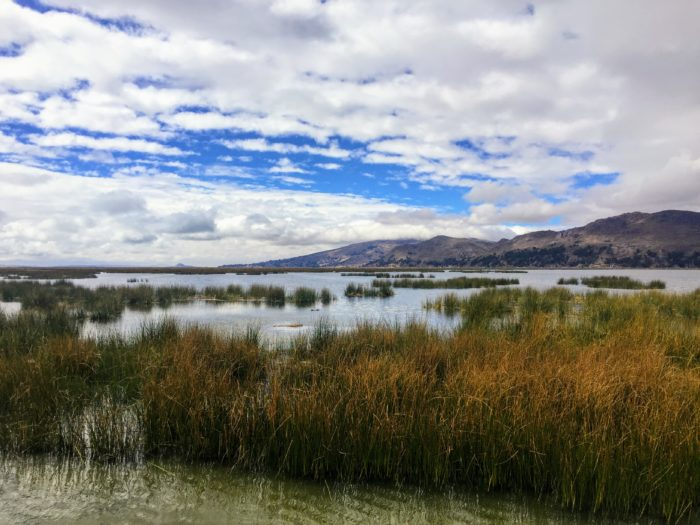 Everything You Need to Know to Visit Lake Titicaca from Arequipa