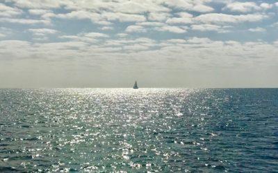 Boat Cruise from Playa del Carmen: Catamaya Sailing Review
