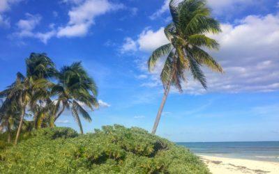 Playa Esmeralda is the Most Underrated Beach in Playa del Carmen