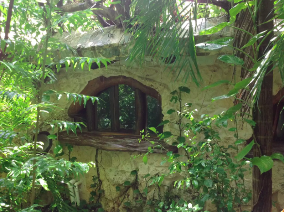 hobbit house in the jungle