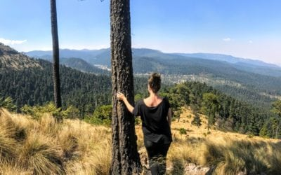 Hiking in Mexico City: Cumbres del Ajusco National Park