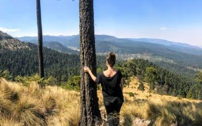 Hiking in Mexico City: Cumbres del Ajusco National Park