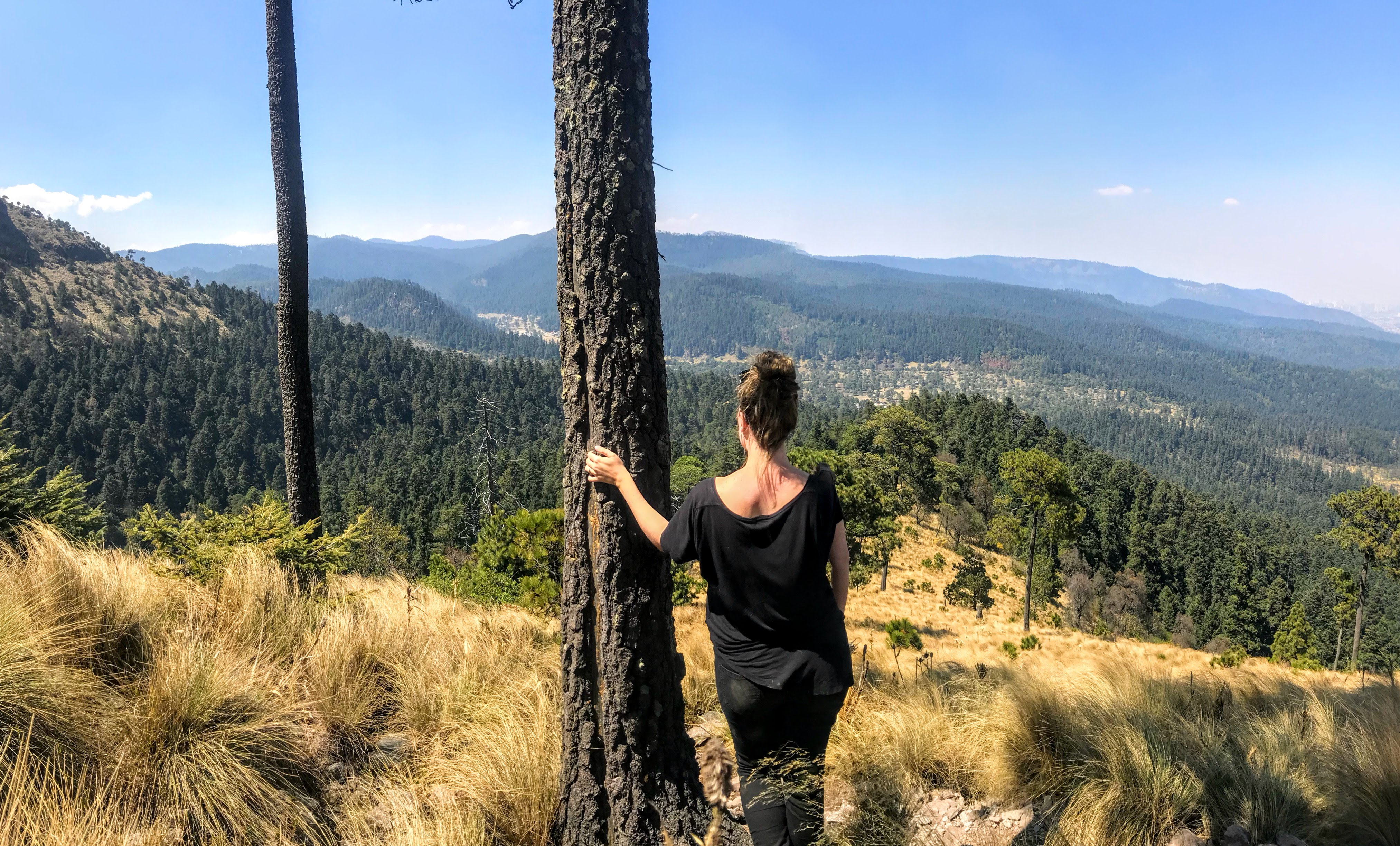 How to Hike in Mexico City at Cumbres del Ajusco National Park