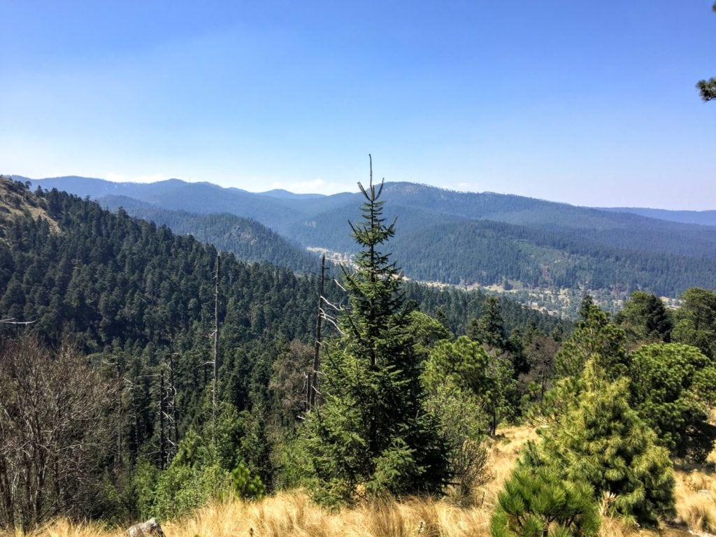 hiking in Mexico City at Cumbres del Ajusco National Park