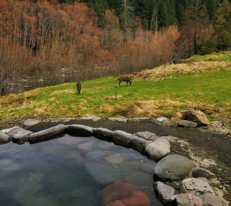 Breitenbush Review: The Clothing Optional Hot Springs in Portland