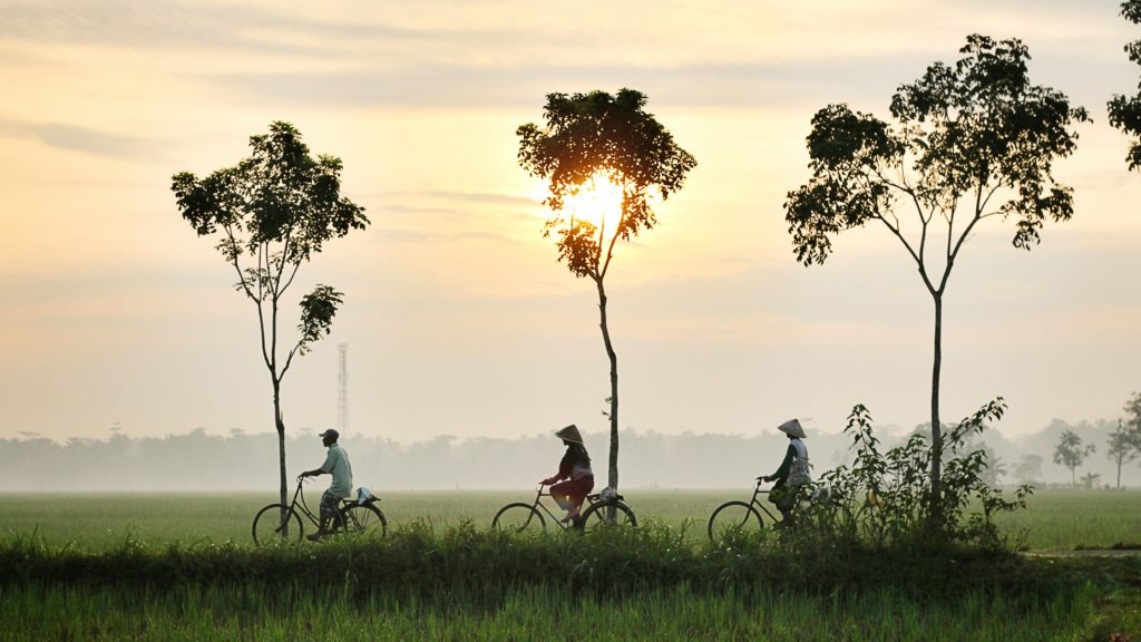 cycling at sunrise