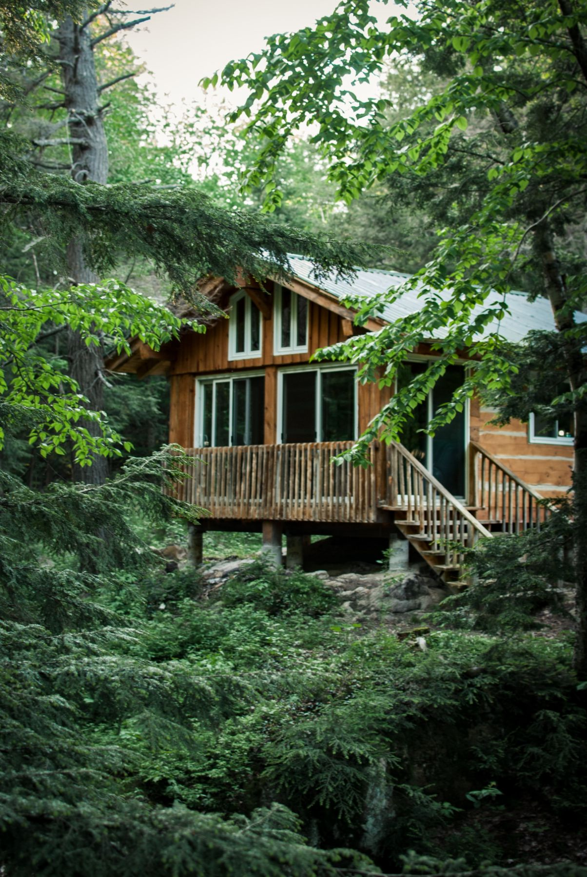 wooden cabin surrounded by greenery