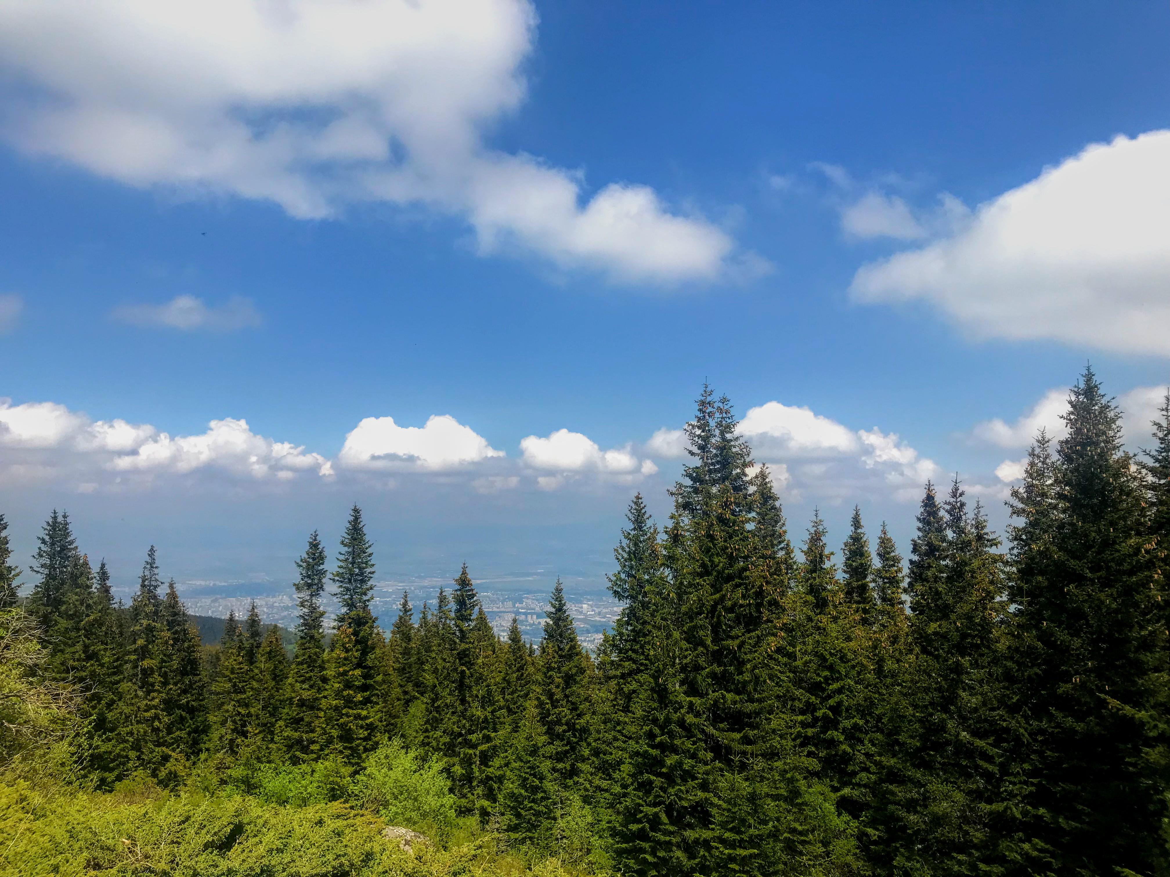 Hiking in Sofia: How to Get to Vitosha Mountain