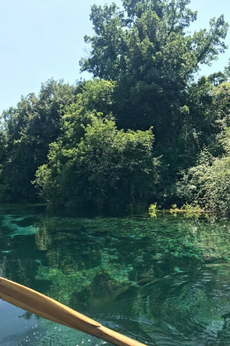 freshwater springs at Lake Ohrid