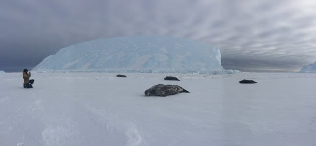 photography in Antarctica