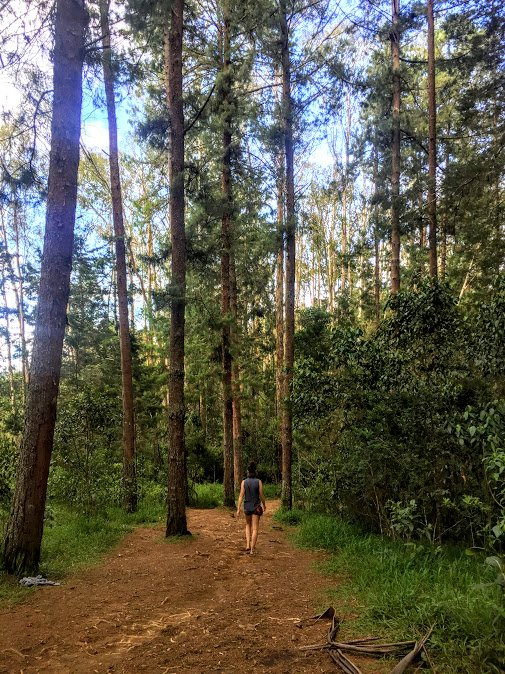 hiking in Parque Arvi