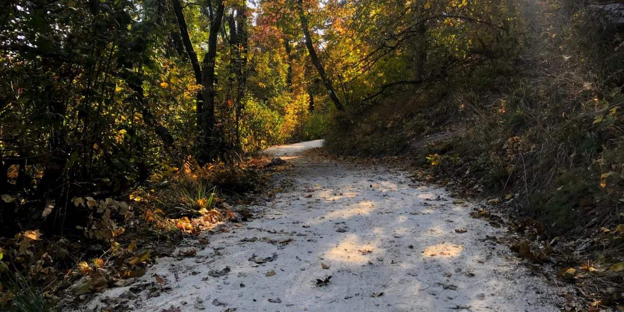 3 Places to Go Hiking in Budapest Without a Car