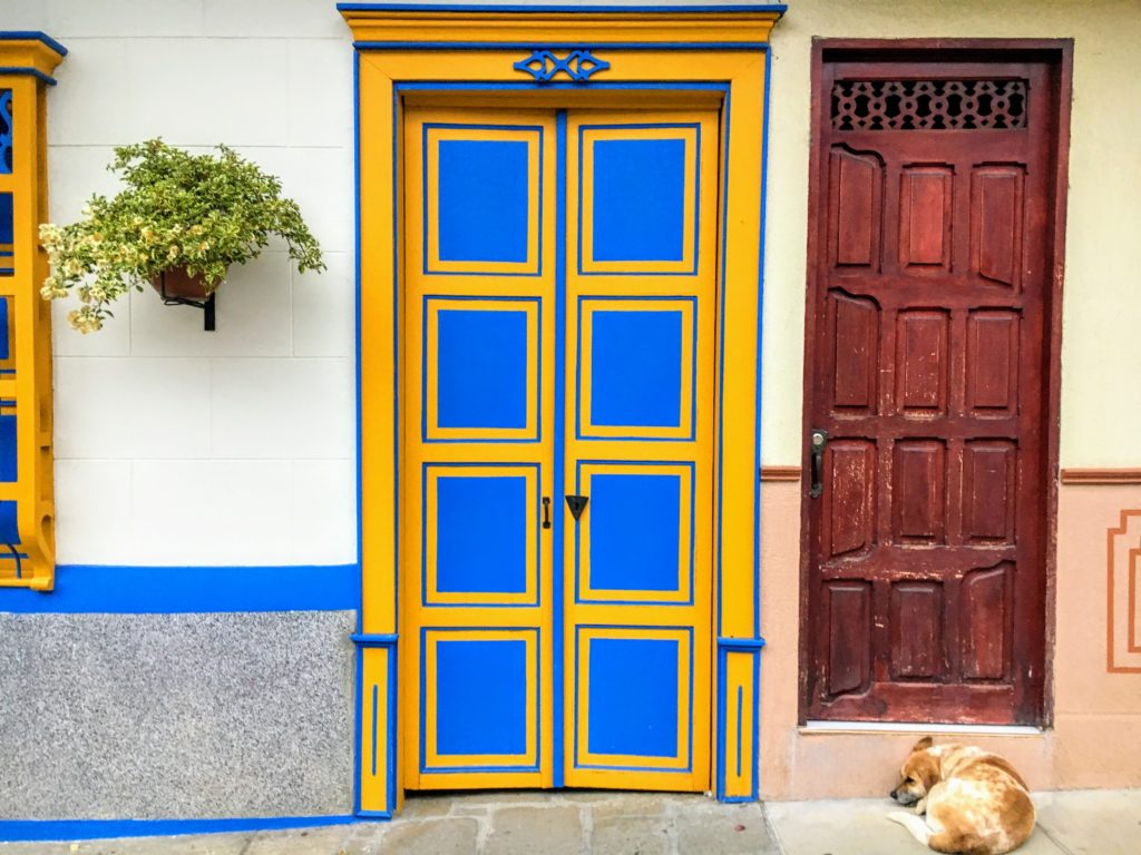 dog sleeping in front of colorful doors in Colombia