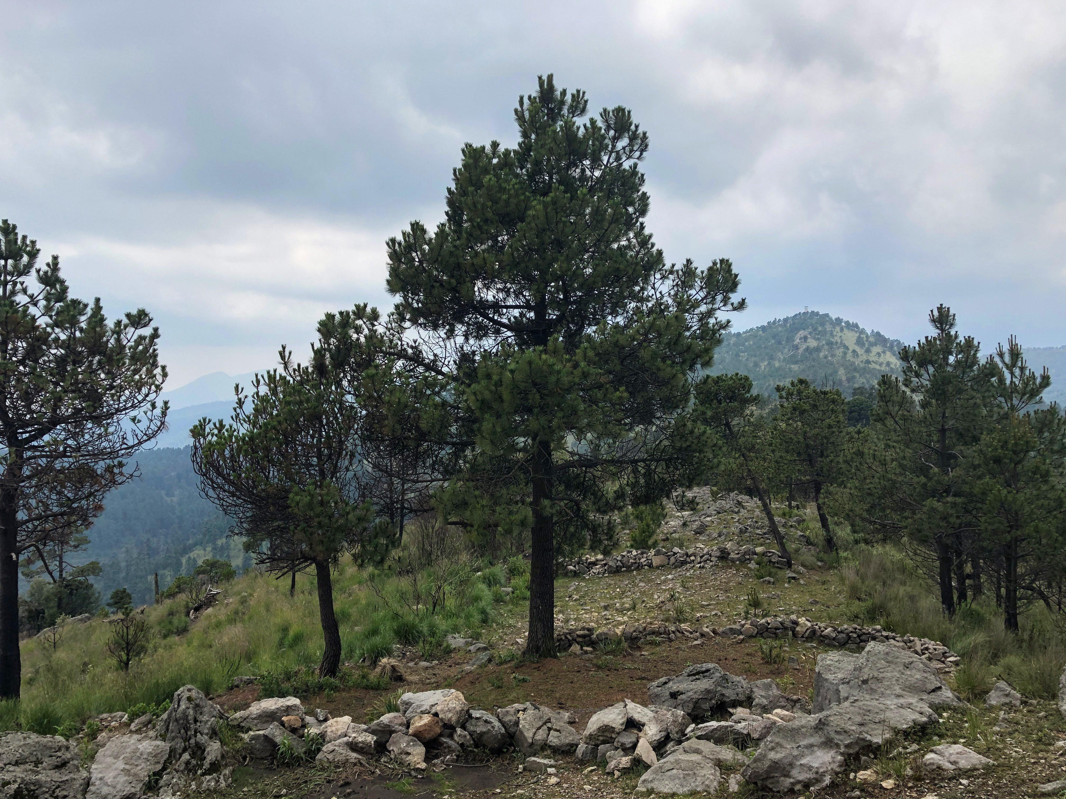 San Miguel peak from El Caballete peak