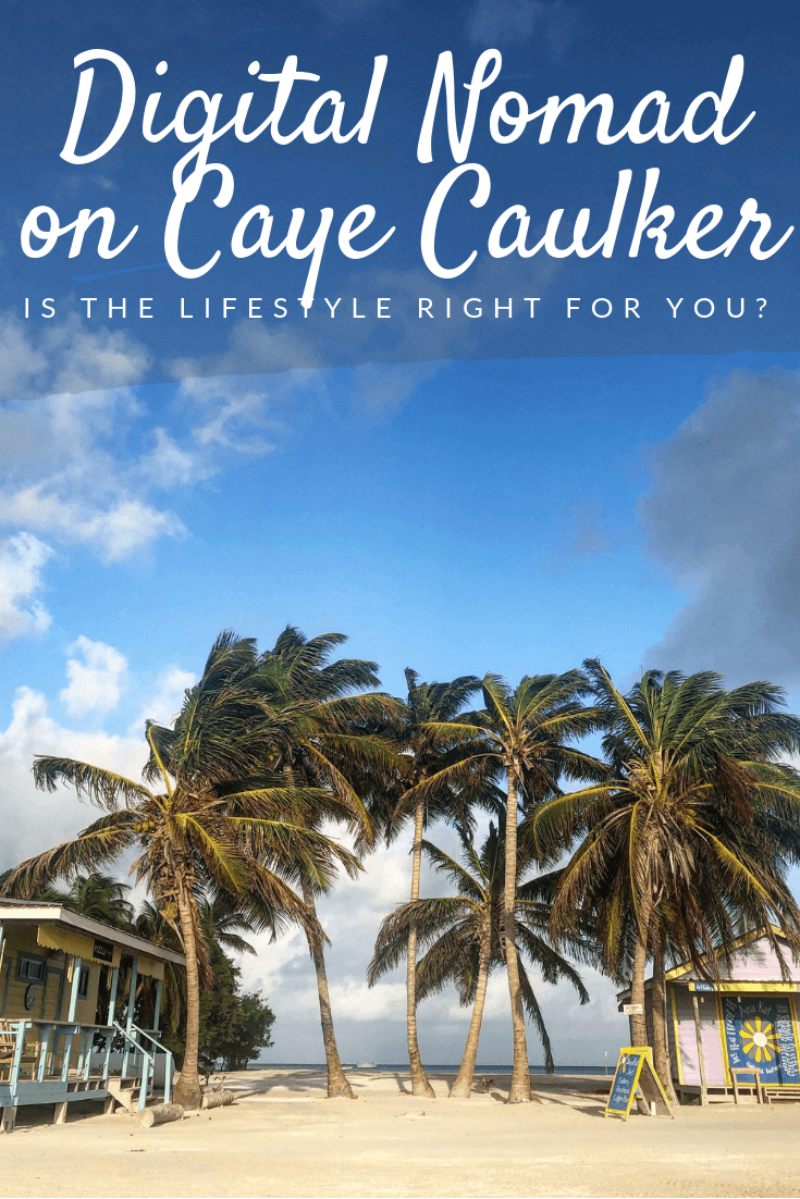 digital nomad on Caye Caulker Pinterest pin