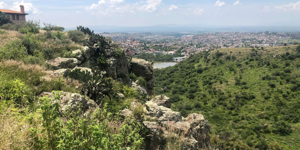 How to Visit Charco del Ingenio Botanical Garden in San Miguel