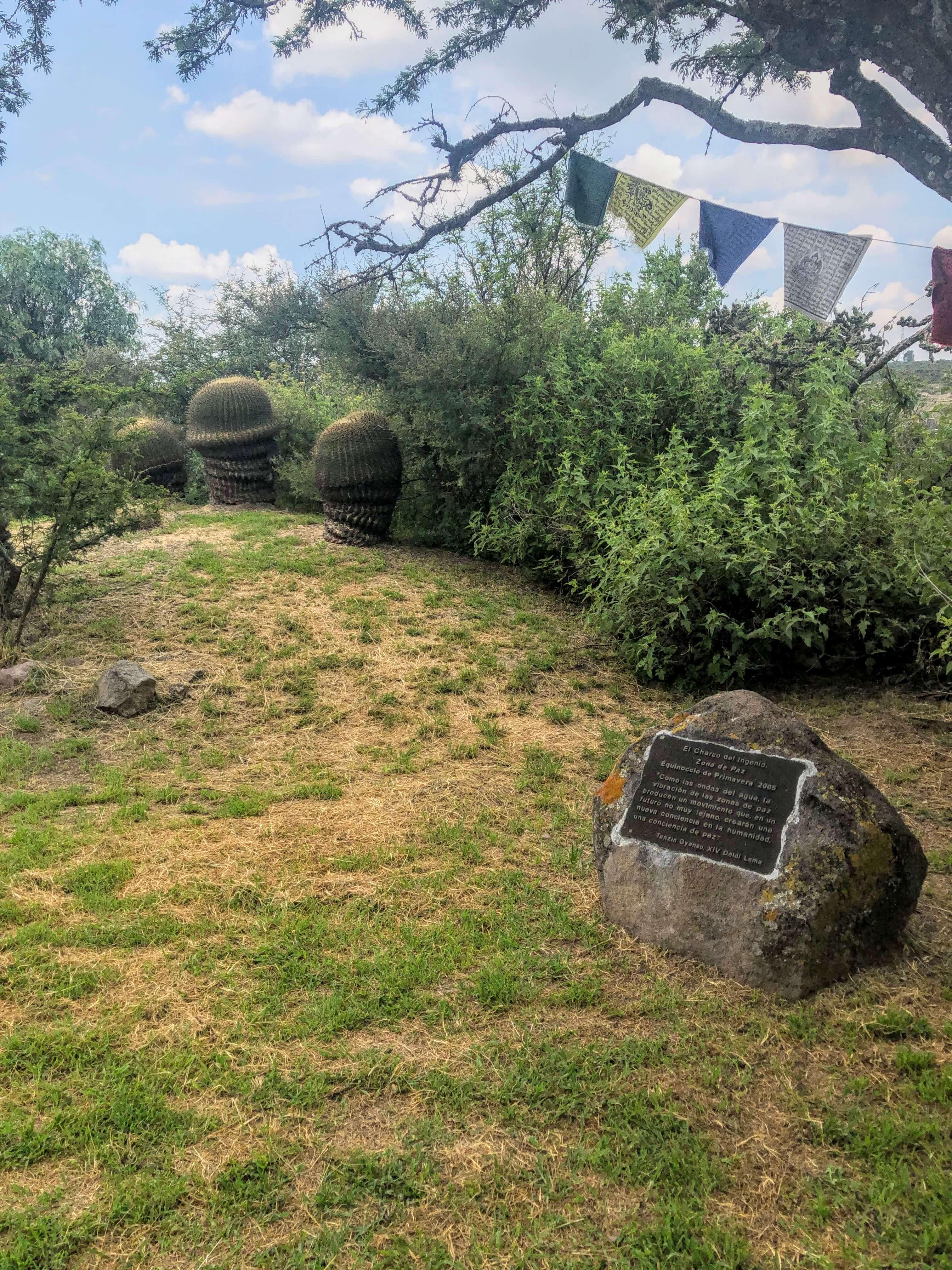Charco del Ingenio Botanical Garden