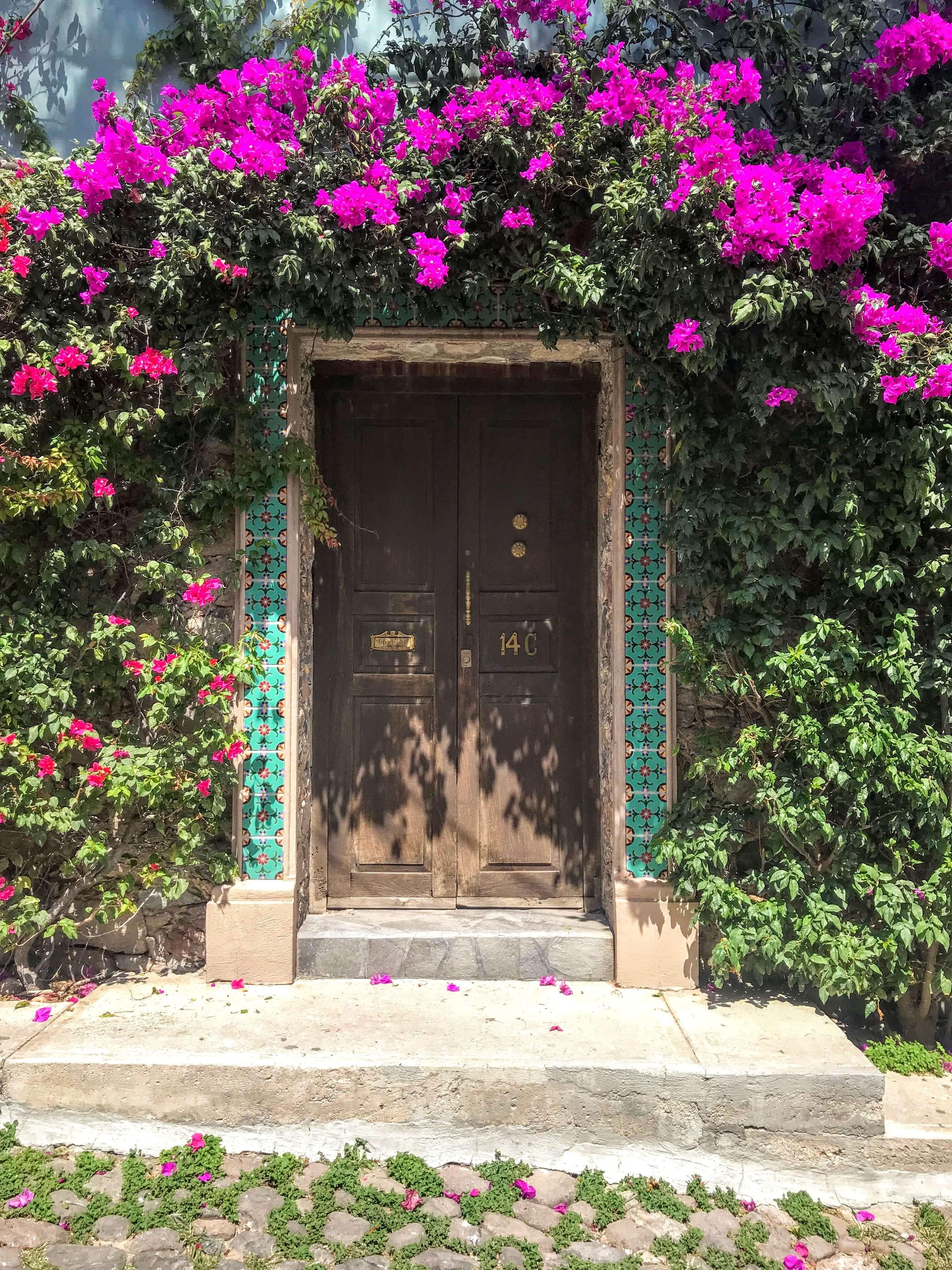 flower covered door in San Miguel de Allende