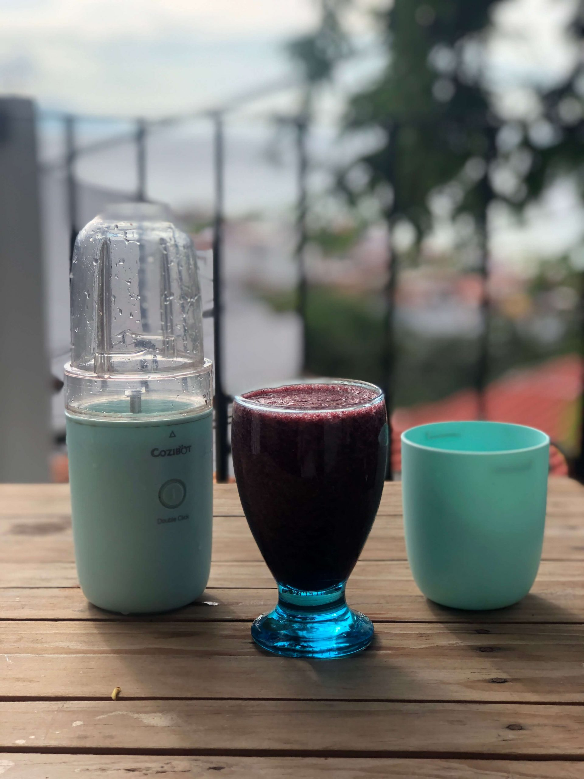 travel blender and smoothie