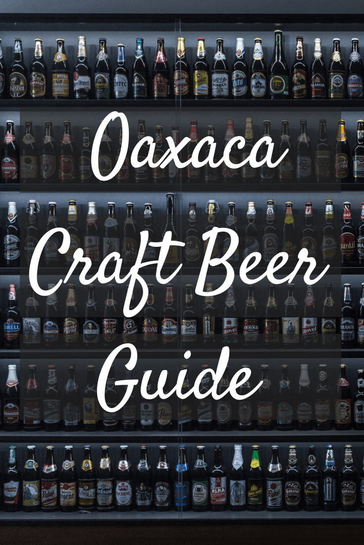 craft beer in Oaxaca Pinterest pin