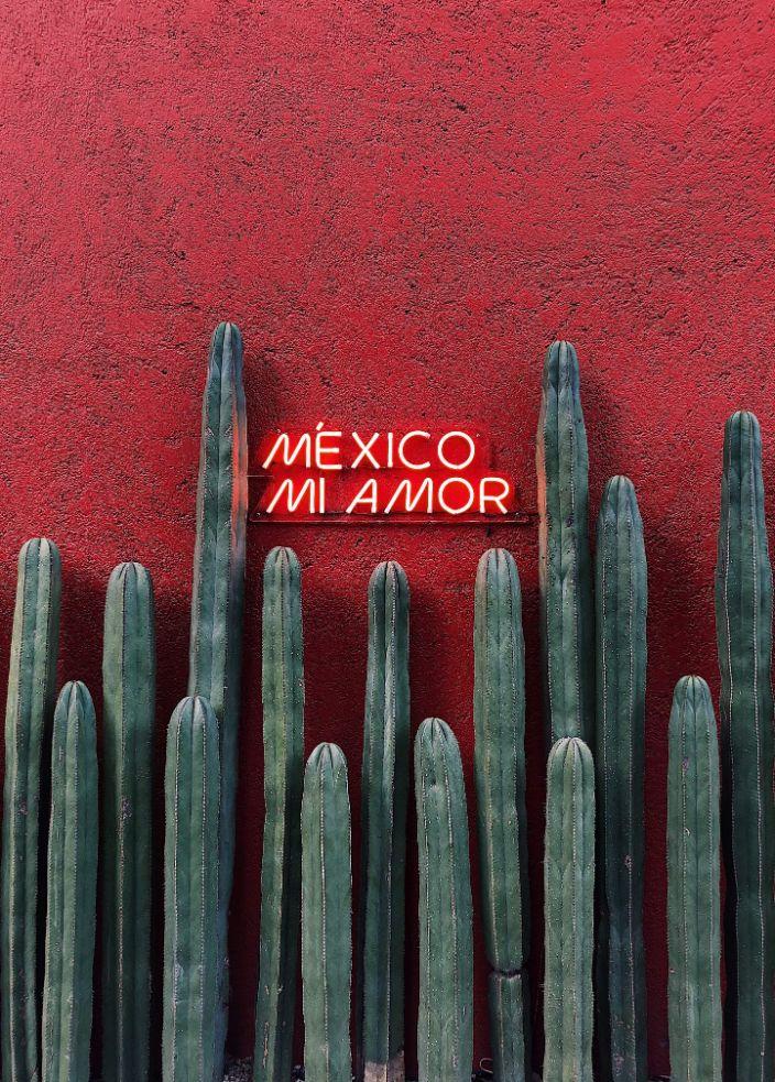 Mexico Mi Amor neon sign
