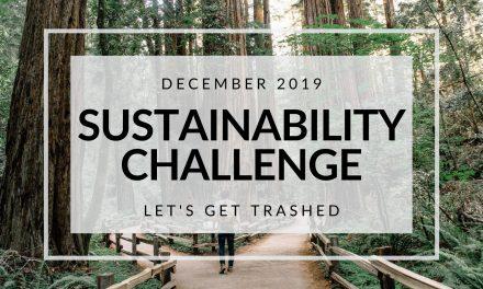 December 2019 Sustainability Challenge: Let's Get Trashed