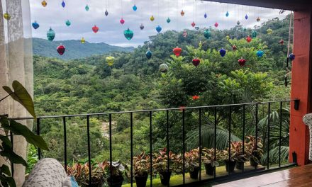 Botanical Garden in Puerto Vallarta: Your Day Trip Guide