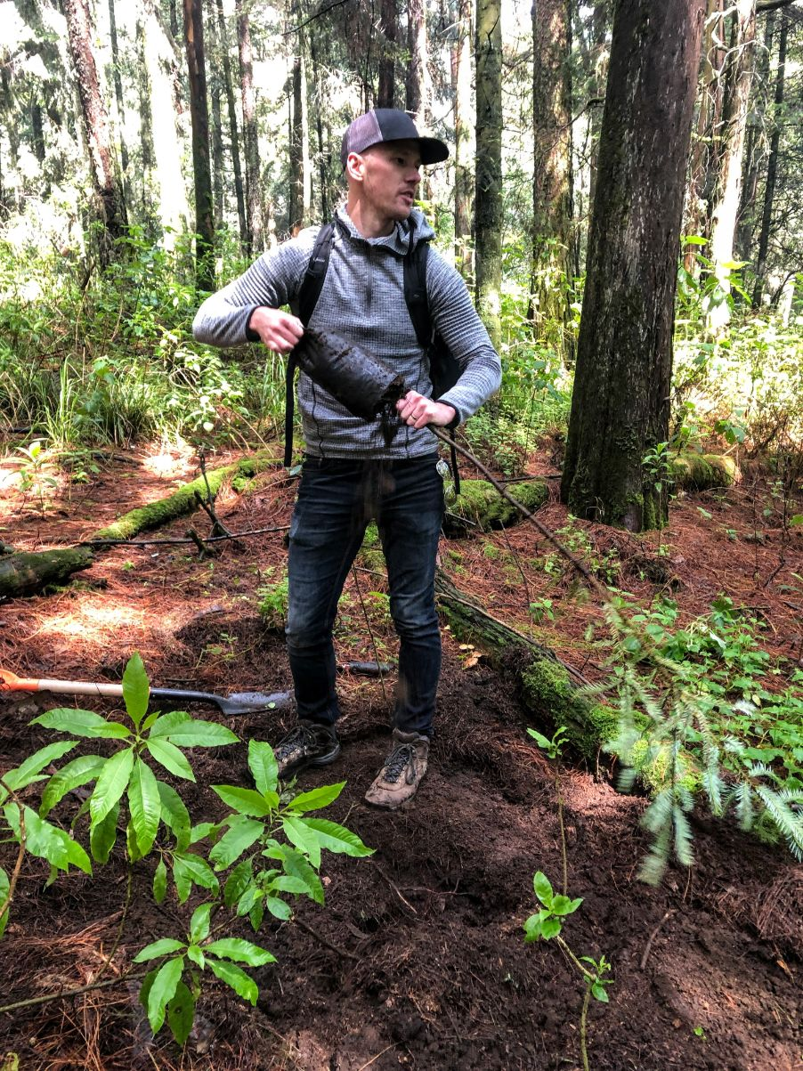 Dan planting trees in a forest