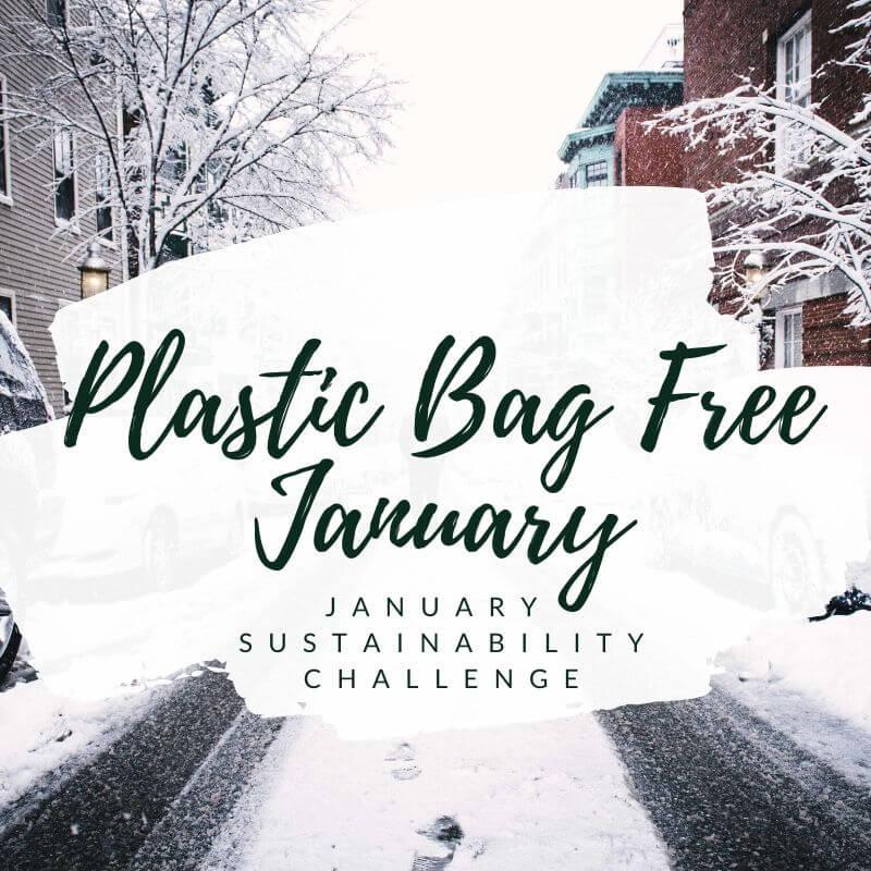 January Sustainability Challenge social media graphic