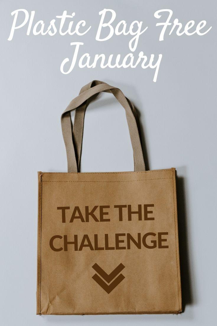 January Sustainability Challenge Pinterest pin