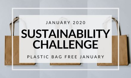 January 2020 Sustainability Challenge: Plastic Bag Free January