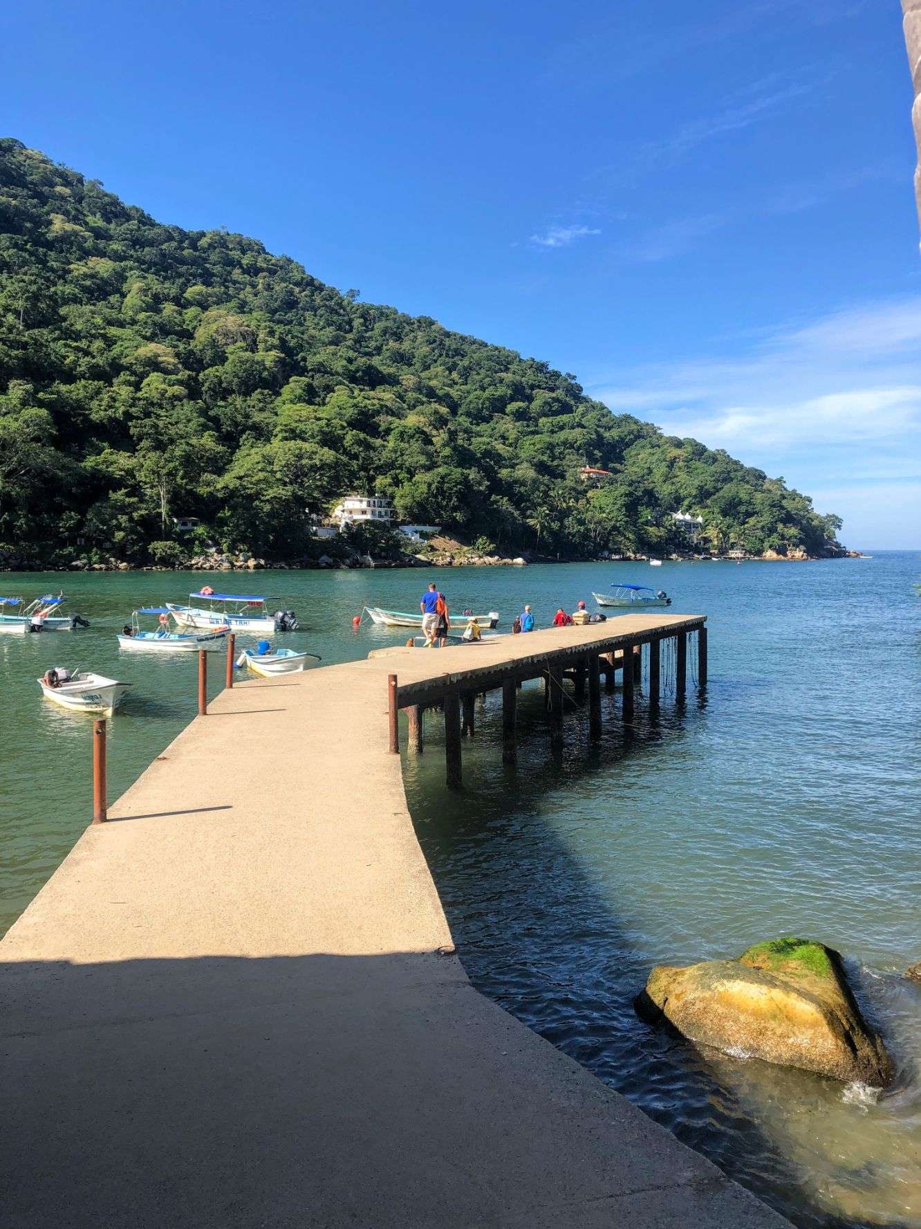 water taxi dock in Boca de Tomatlan