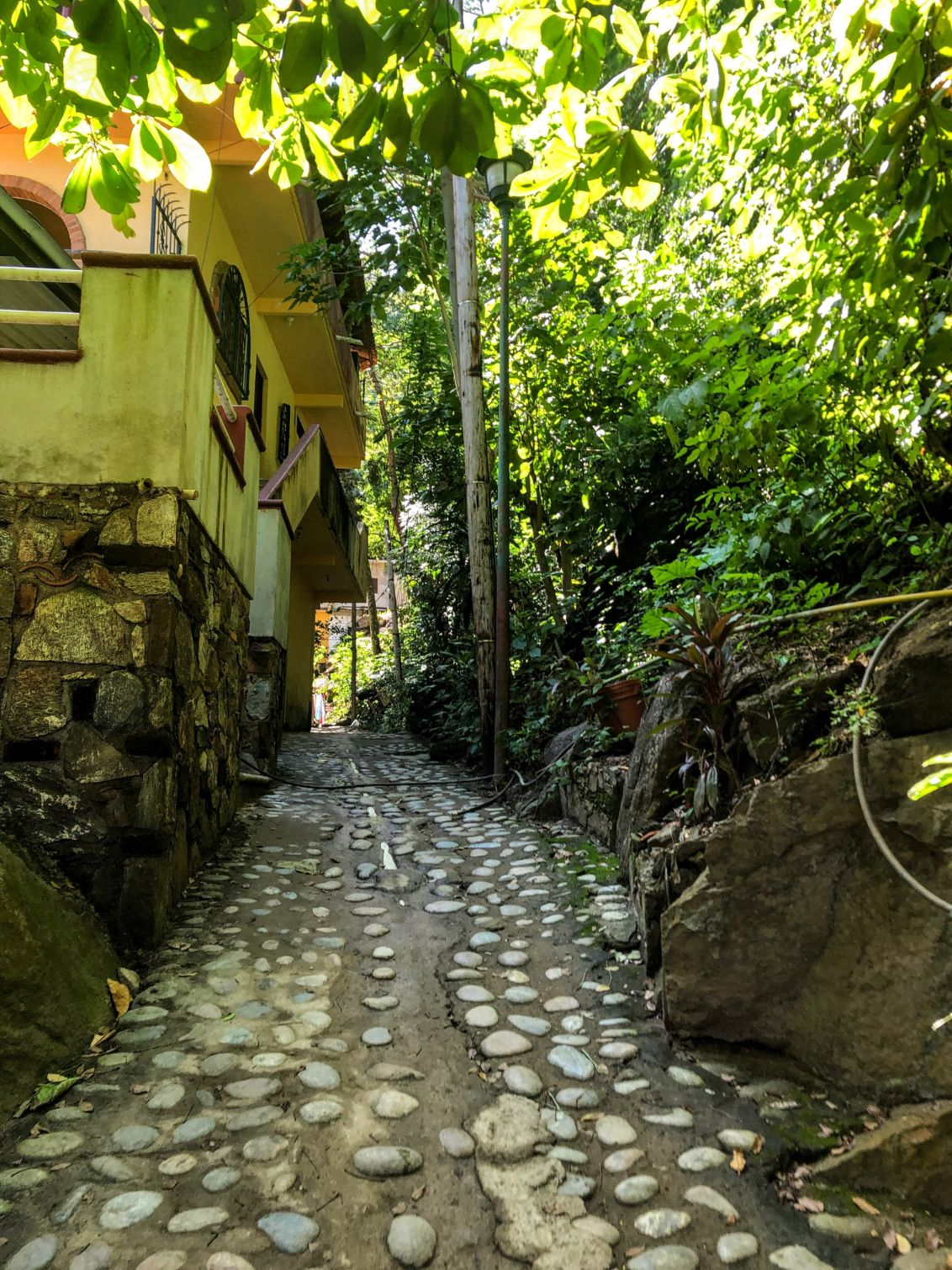 shaded and paved walk leading to the Yelapa waterfall