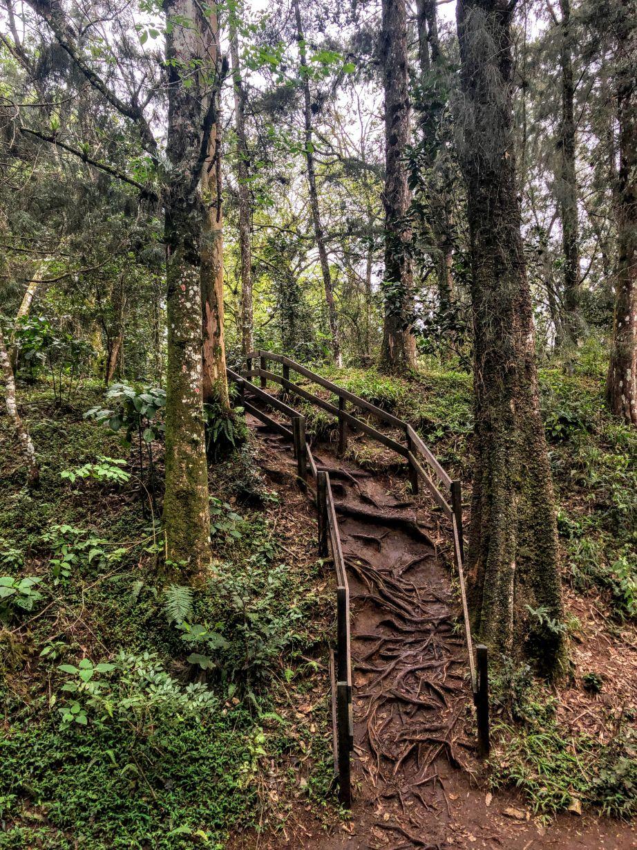 natural staircase in Cerro del Borrego Ecoparque