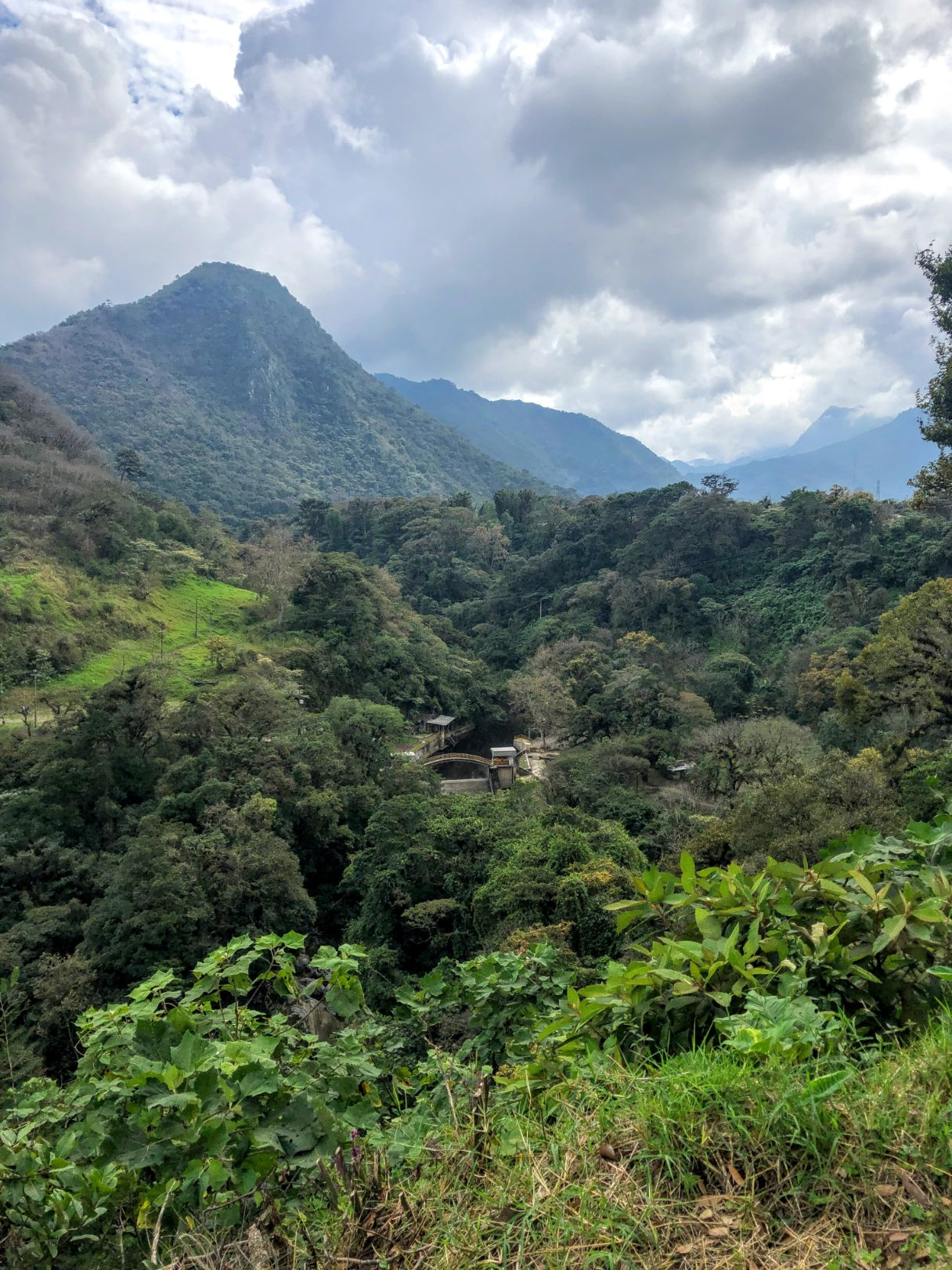 lush green forest and mountain in Orizaba from a distance