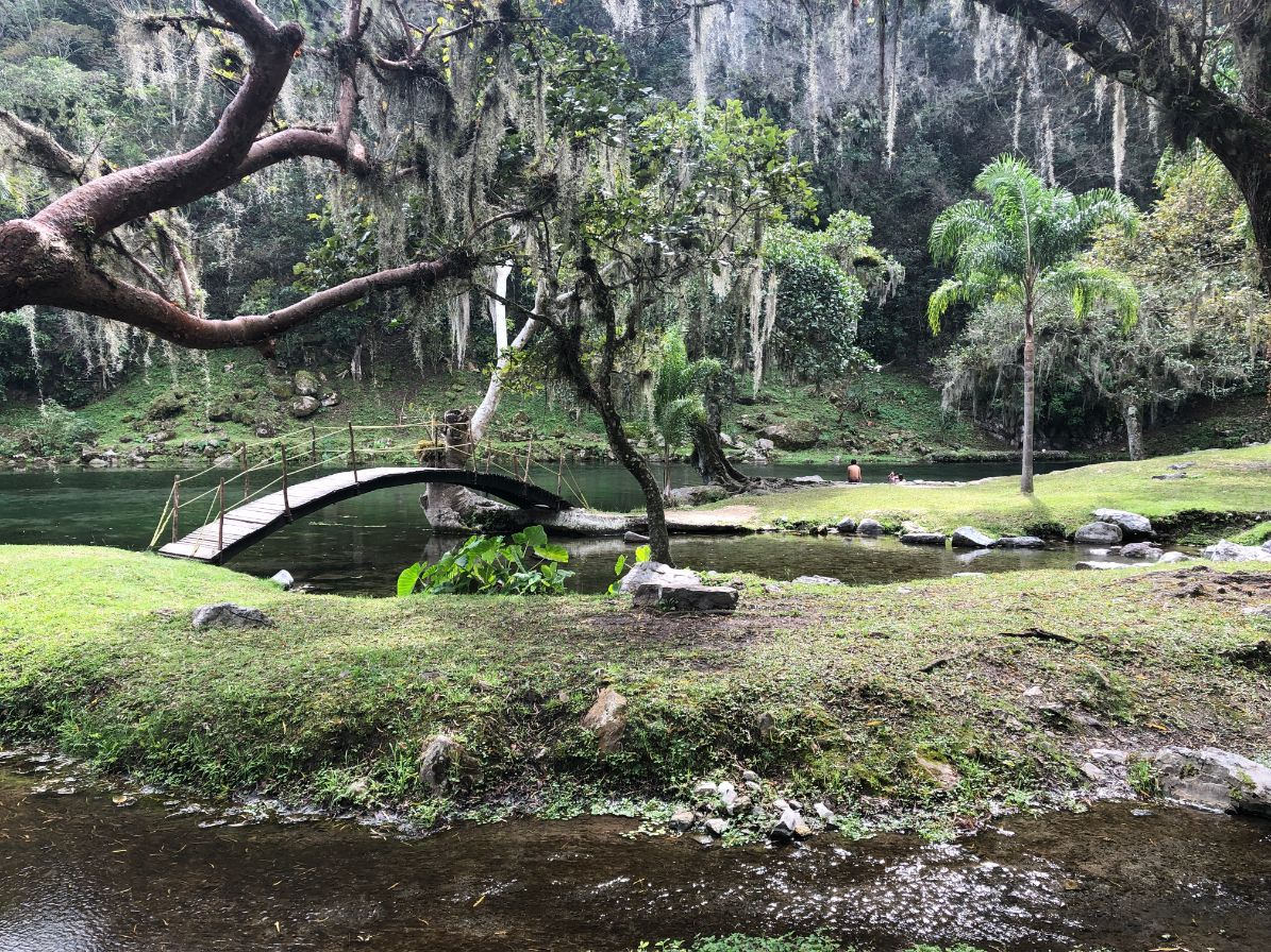 trees with spanish moss at Los Sifones lake with a bridge over it