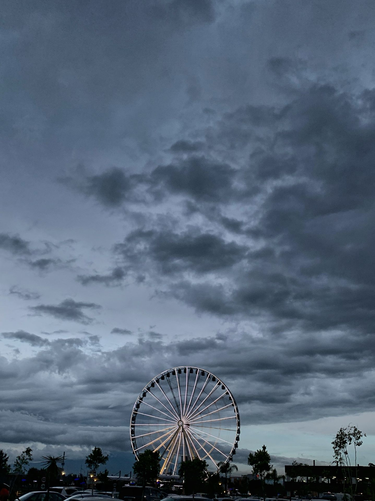 small ferris wheel and expansive gray night sky