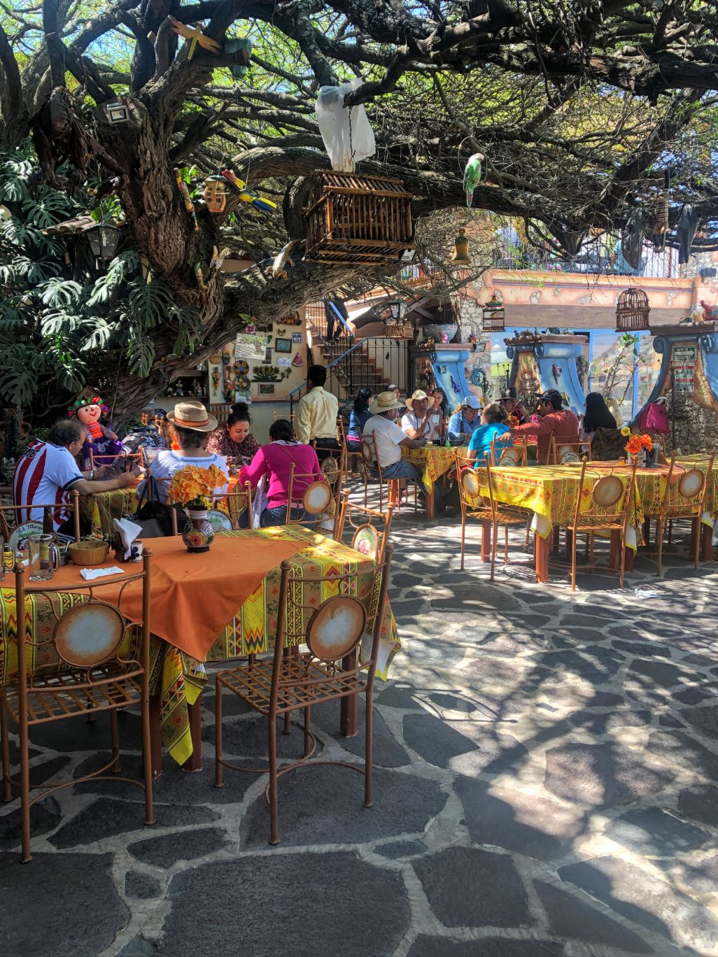 Restaurant El Mezquite courtyard under a tree in Bernal