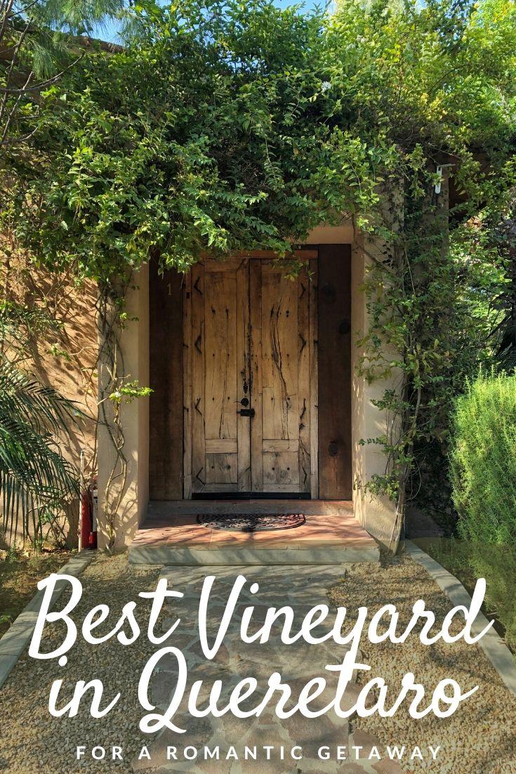 best vineyard in Queretaro Pinterest pin