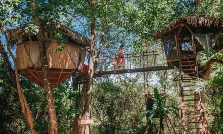 10 Enchanting Treehouses on Airbnb For Your Next Getaway