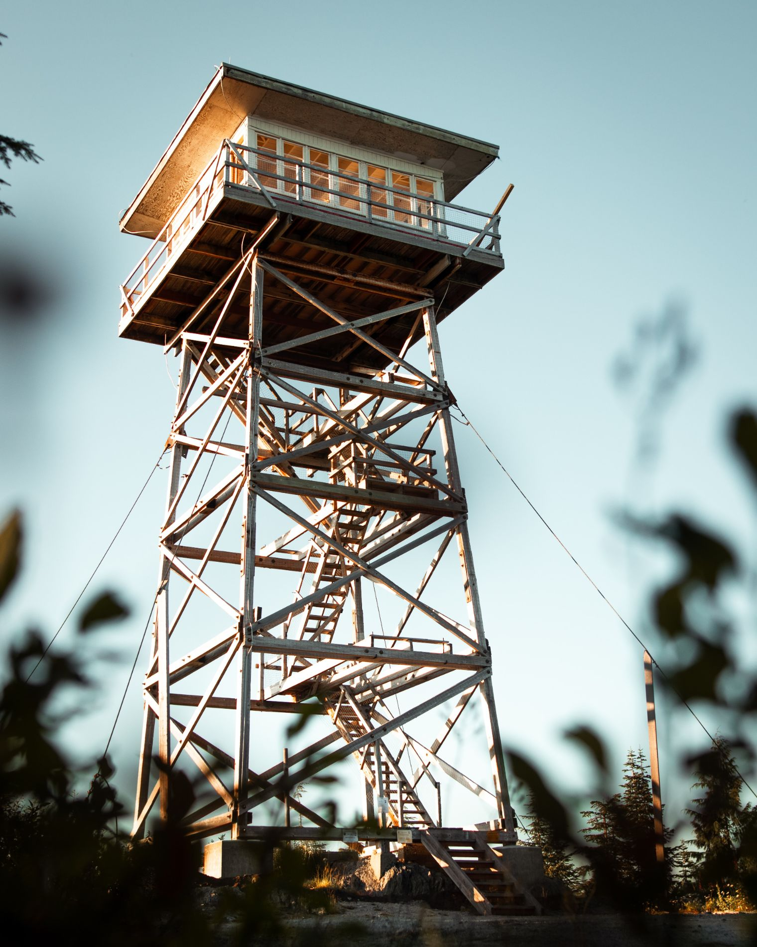 fire lookout tower in a forest